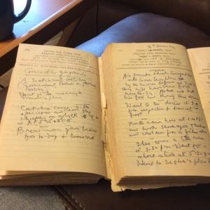 Ramabrahma Diaries